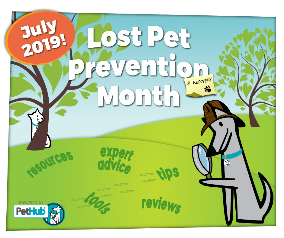 PetHub Lost Pet Prevention Month launches July 2019